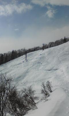 雪キター(^O^)