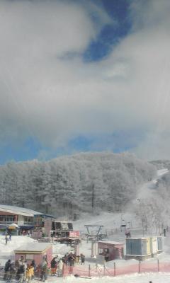 やっと冬景色