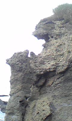 奇岩 親子熊岩