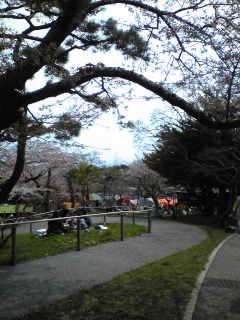 函館公園なう